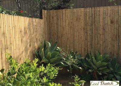 Bamboo Fencing-Jati-Natural-Pic1